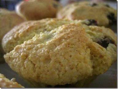 buttermilk blueberry-corn muffins (13)