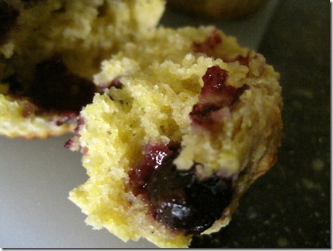 buttermilk blueberry-corn muffins (15)
